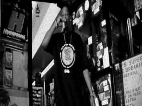 Jay-z Feat Beanie sigel - Where Have You Been (Video)