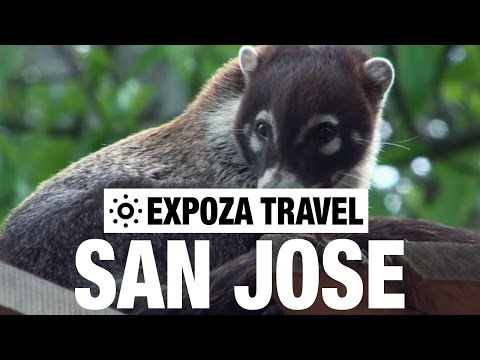 San Jose Travel Video Guide