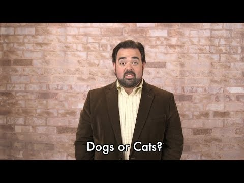 Is Tony Katz a Dog Person or a Cat Person? (Hint: Neither)