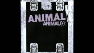 A.N.I.M.A.L. - Discriminación
