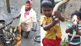 Traditional Fishing | Fresh Country Fish Always Makes Us  Hungry | Big Net Trap | Catching Fish
