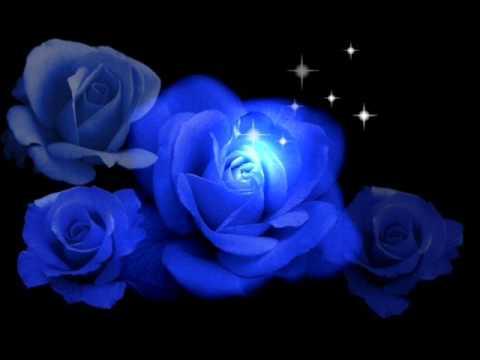 Cwt - Миллион Синих Роз