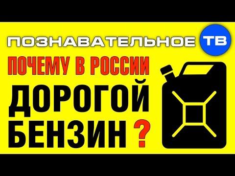 Почему в России дорогой бензин? (Познавательное ТВ, Артём Войтенков)