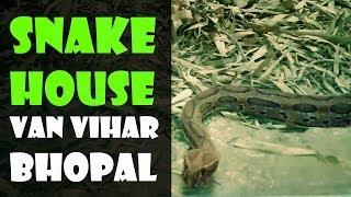 SNAKE HOUSE VAN VIHAR  BHOPAL | ZOO | NATIONAL PARK | LAKEWIEW | GREATER LAKE | FUNNY | CHALOBADDE