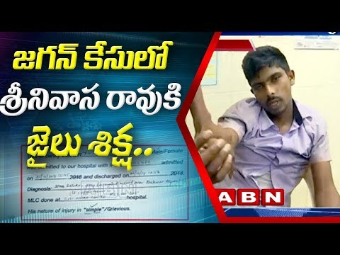 జగన్ కేసులో నిందితుడు శ్రీనివాస్ వైజాగ్ జైలు కి తరలింపు | Srinivas Investigation Completed