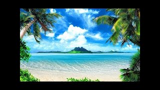 Caribbean Lounge Film trailer hours of natural oasis for home and office!
