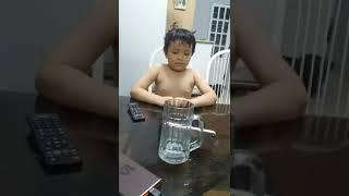 Tôm- baby shark