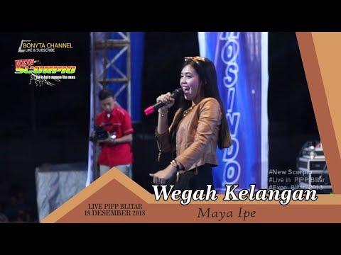 BLITAR VIRAL ( Maya Ipe - Wegah Kelangan New Scorpio Live PIPP 26 Desember 2018 )
