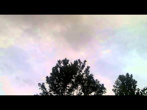 Burung Walet Riang Gembira Suara Panggil Luar Ini 13122013889 video