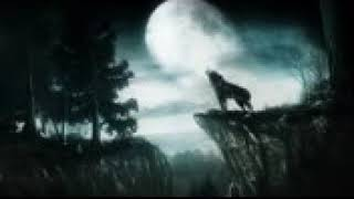 Emotional Music Cry Of The Lone Wolf