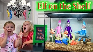 Sparkles Lost Her Magic! Aquarium & Chandelier Merry Go Round!! Elf on the Shelf Days 8 -9