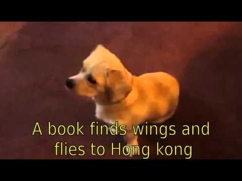 A book finds wings and flies to Hong kong