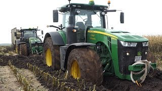 John Deere 8320R Gets TOTALLY STUCK in MUDHOLE During Corn Chopping 2019 | Maisernte | DK Agri