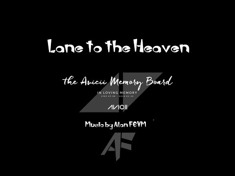 I Donate this track to my favorite DJ AVICII