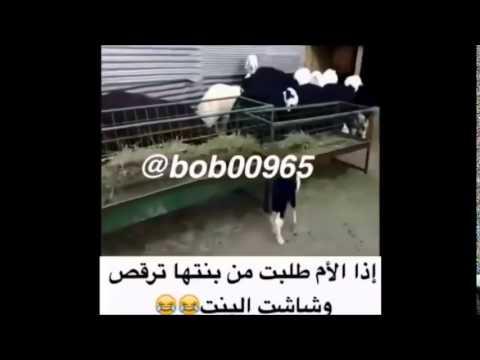 اذا الام طلبت من بنتها ترقص وتحمست البنت ههههههههه thumbnail
