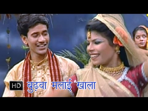 Budhwa Malai Khai | बुढ़वा मलाई खाई | Dinesh Lal Yadav  | Bhojpuri Hot Songs