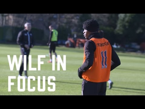 Player In Focus | Wilfried Zaha