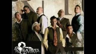 Watch Alacranes Musical El Duranguense video