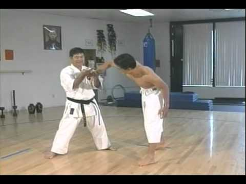 Goju Ryu Karate Grabbing and Tearing Image 1