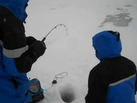 Lake Trout Ice Fishing Ely MN