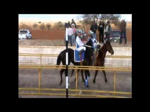 carreras de caballos en carril el roble fresnillo zac 2013