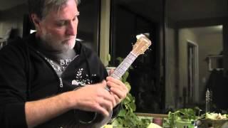 Misterioso - ukulele season 102