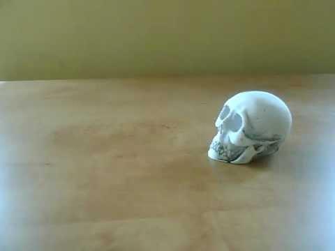 Animated Skull thumbnail