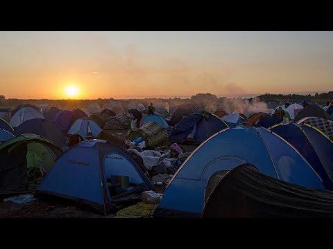 L'arrivée des réfugiés en Autriche, en Allemagne et en France