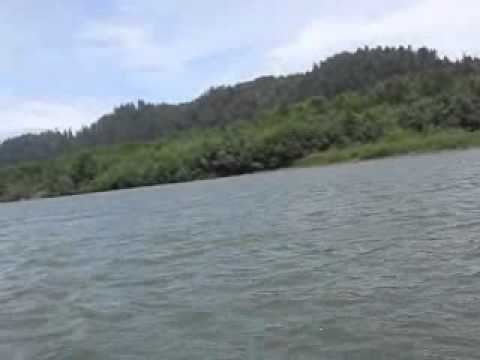 Whale on the Klamath River
