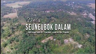 Pemetaan Desa Seunebok Dalam Idi Tunong Kab Aceh Timur