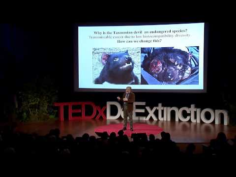 Hybridizing with extinct species: George Church at TEDxDeExtinction
