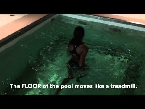 Trotter Chronicles 11 (Under Water Treadmill)