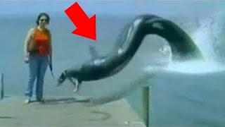 10 Mysterious Deep Sea Creatures Caught On Camera