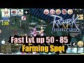 Ragnarok M Eternal Love Fast Level up 50 to 85 & Farming Spot