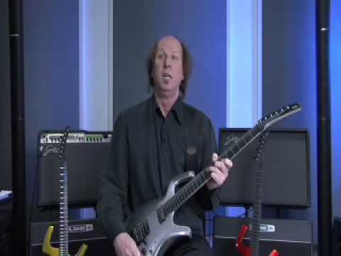 Adrian Belew Signature Parker Fly