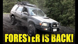 Subaru Forester Off Road - The Forester is Back!