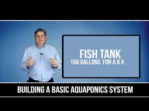 Building A Basic Aquaponics System