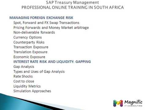 SAP Treasury and Risk Management PROFESSIONAL  IN SOUTH AFRICA@www.magnifictraining.com