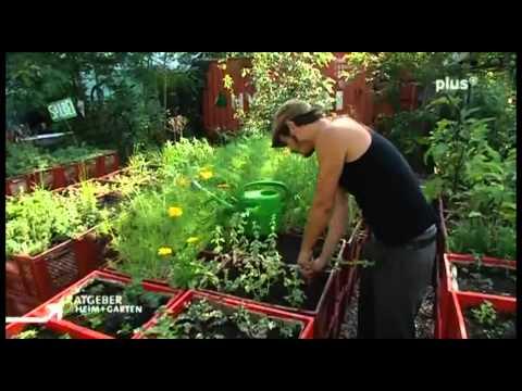 Alternativer Garten