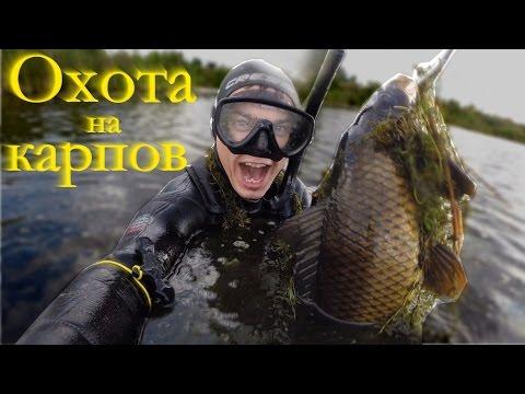 карп в челябинской области видео