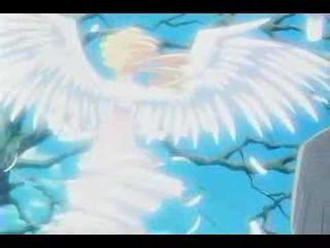 Ah! My Goddess AMV God Send Me An Angel Video