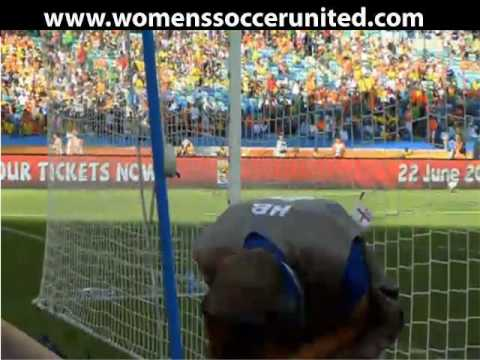 World Cup 2010 - Fifa man feels force of strike