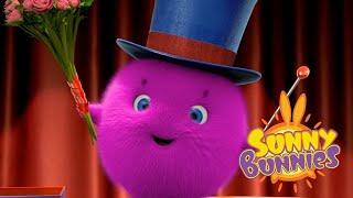 Sunny Bunnies | HOCUS POCUS | Compilation | Cartoons for Children | WildBrain Happy Kids