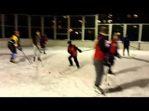 Гоняем хоккей