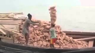 The most unusual way to move bricks !