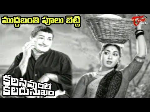 Kalasi Vunte Kaladu Sukham - Telugu Songs - Mudda Banthi Poolu Petti - Ntr - Savitri video