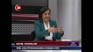 Yeşil Ayak İzi | Dr.Jale Nur Süllü Esk CHP Mv