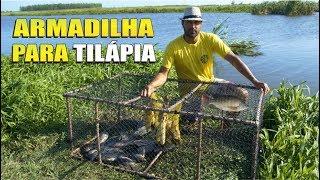A MELHOR ARMADILHA PARA PESCAR TILÁPIA | DICA Como fazer armadilha para peixes com cano de PVC