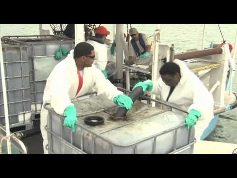 Plaquemines Oil Cleanup .mov