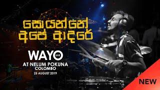 WAYO (Live) - Soyanne Ape Adare